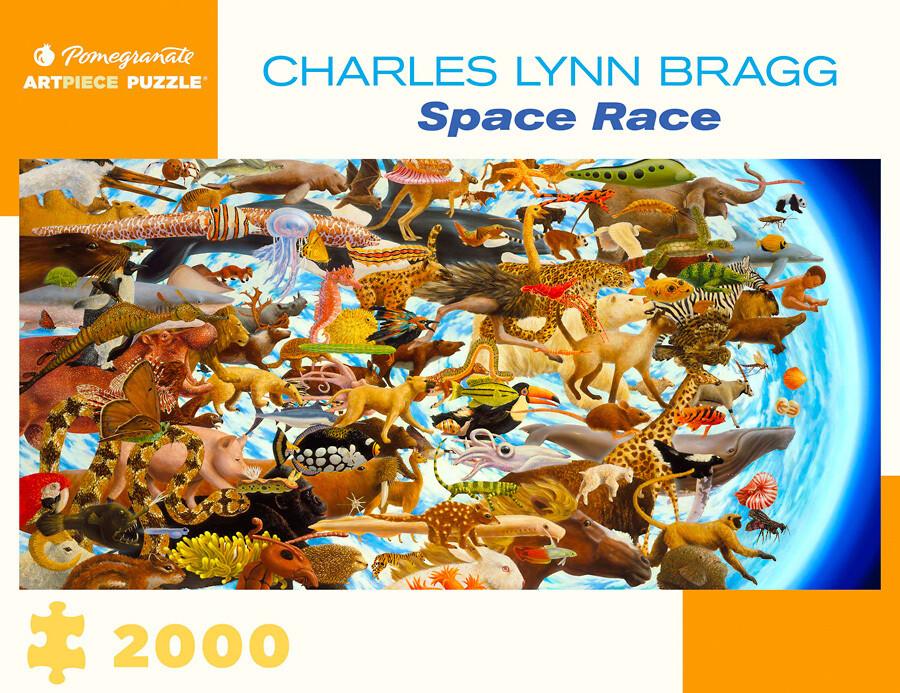 Space Race 2000 Pc
