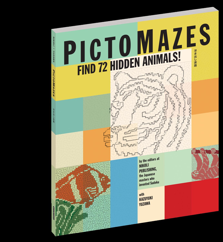Pictomazes Book