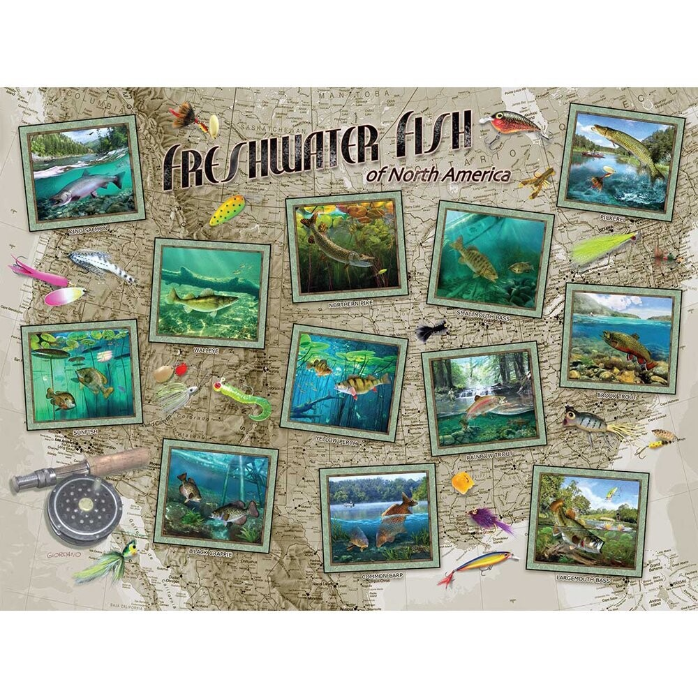 Freshwater Fish Of North America 550 Pc