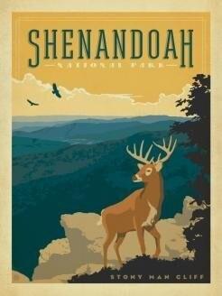 Shendandoah National Park 500 Pc