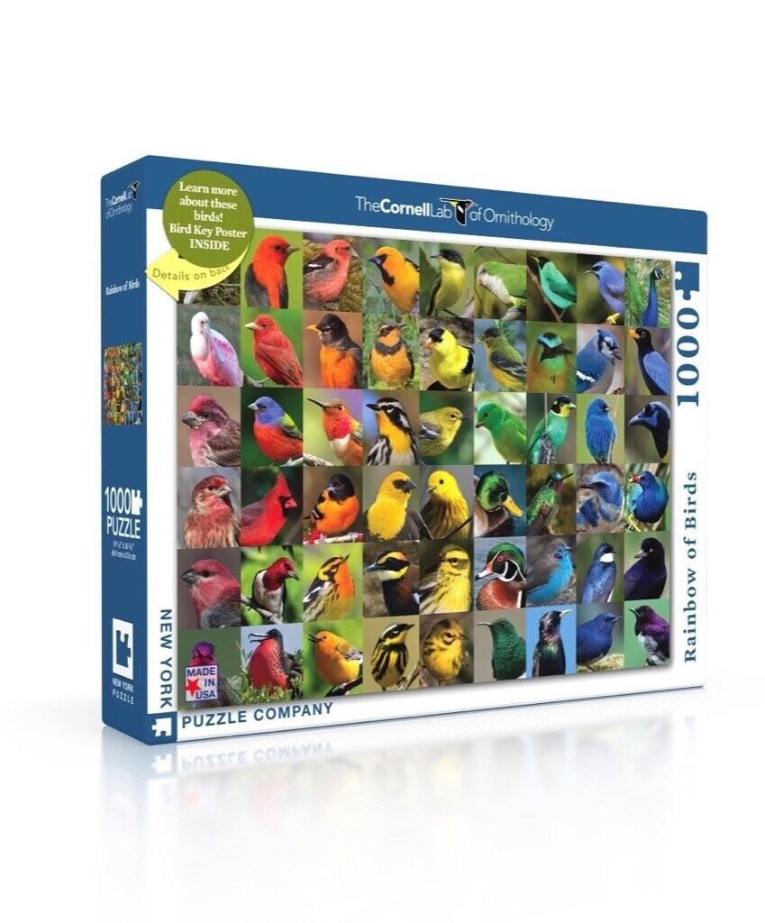 Rainbow Of Birds 1000 Pc