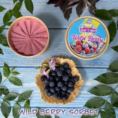 Wild Berry Sorbet - Italian Gelato