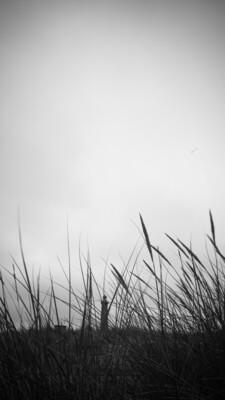 Strawphoto