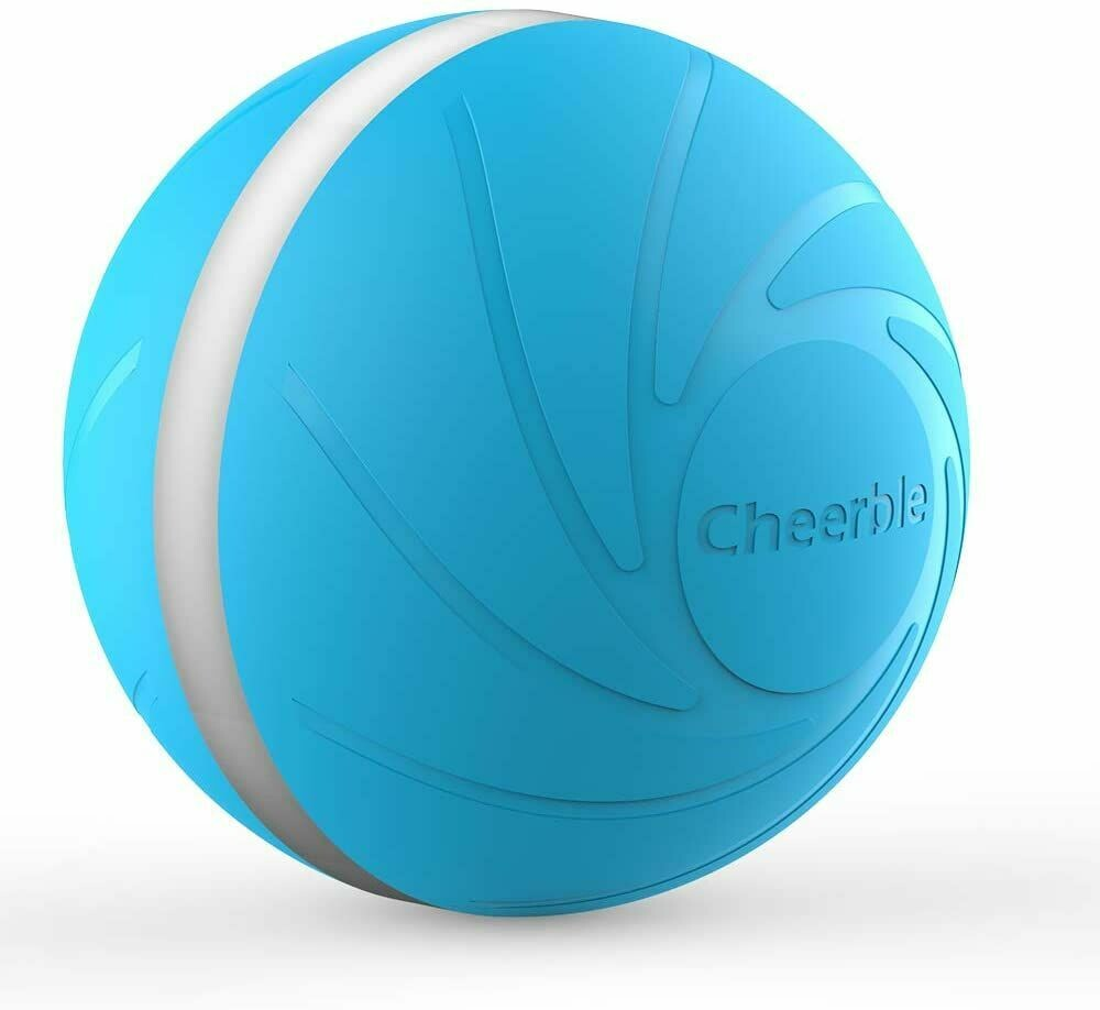 Wicked Ball - Interactive Toy