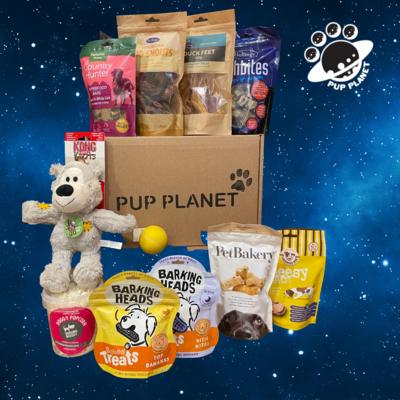 Pup Planet VIP Gold Reward Box