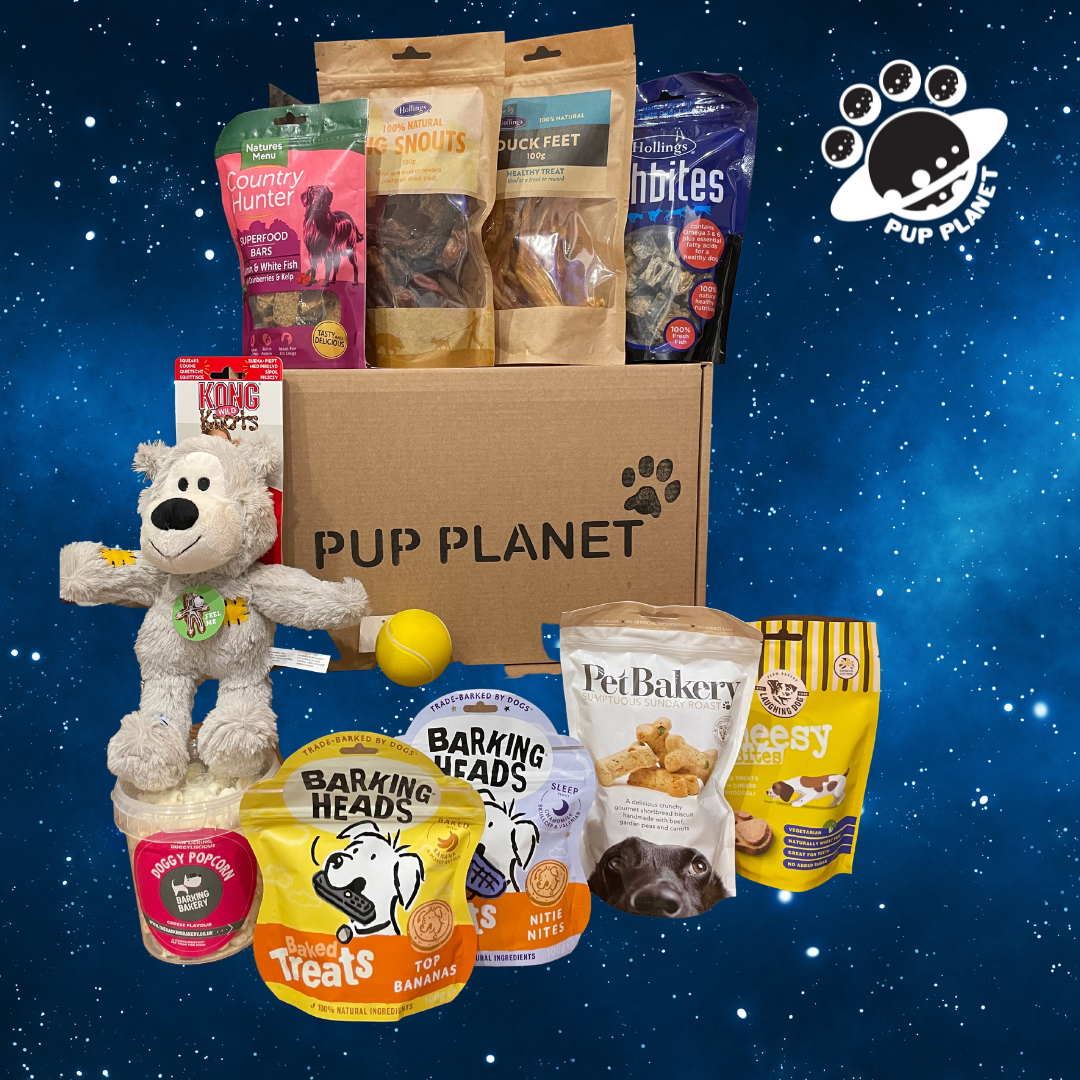 4x Pup Planet VIP Boxes (per year)