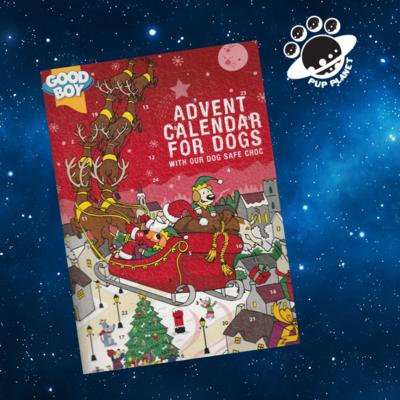 Dog Choc Advent Calendar 72G