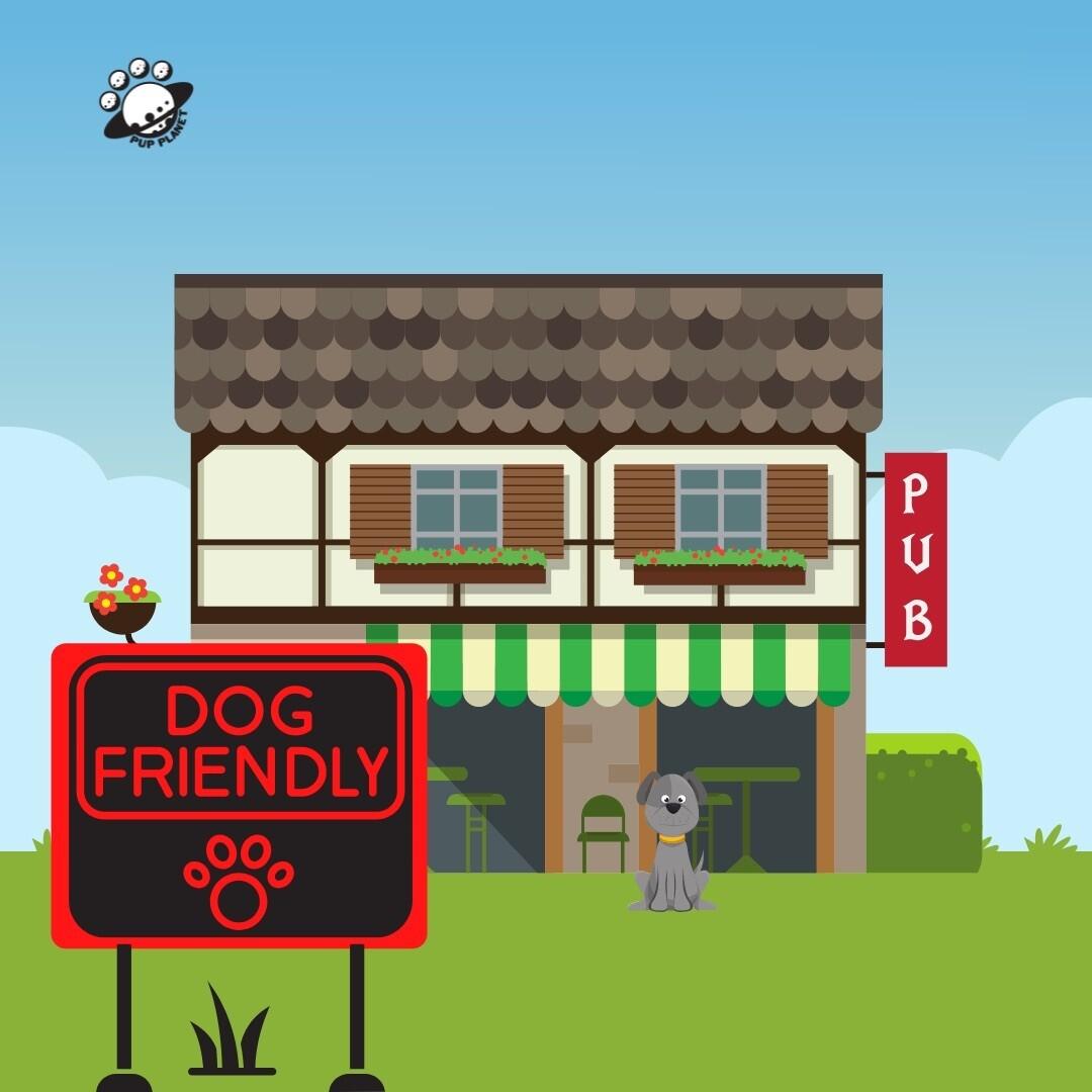 Dog Friendly Places
