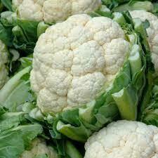 Cauliflower - Seed