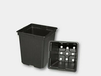 5.5 inch pot square