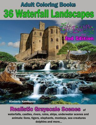 Waterfalls and Castles Coloring Book for Adults Digital Download