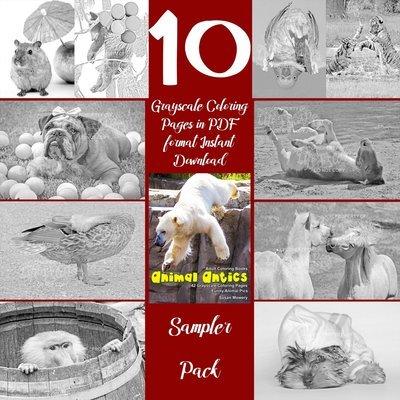 Animal Antics Sampler Pack Digital Download