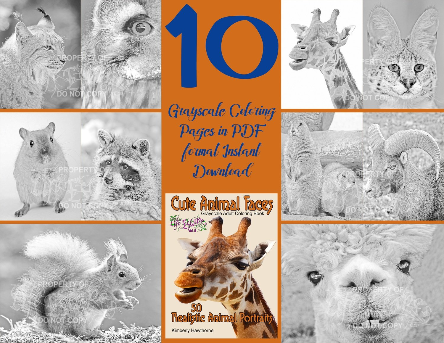 Cute Animal Faces Sampler Pack Digital Download