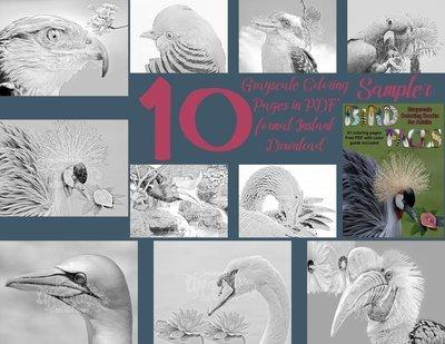 Bird Faces Sampler Pack Digital Download