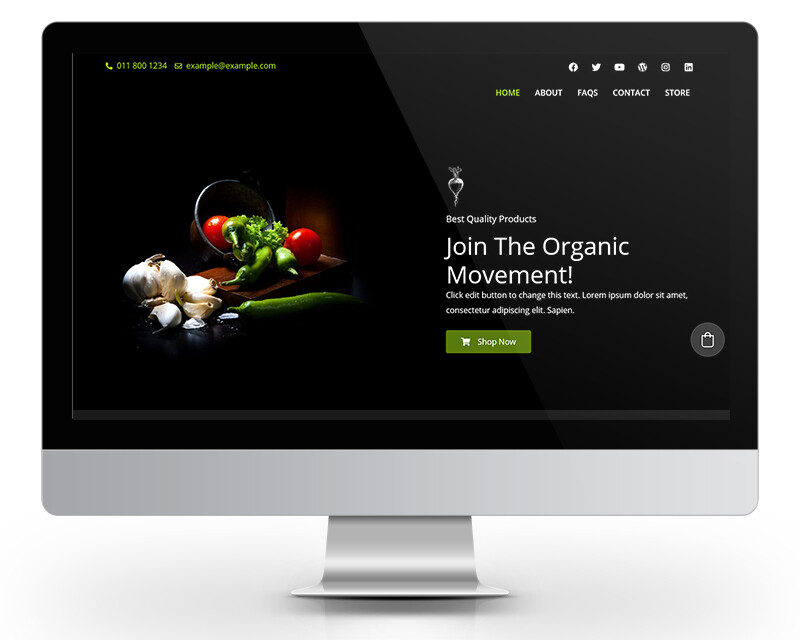 Simple Snappy Website with shop