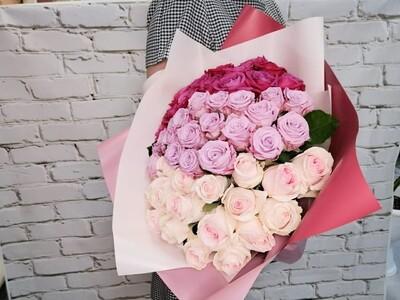 51 Роза Градиент