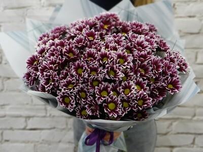 Букет 25 Хризантем Гайдар