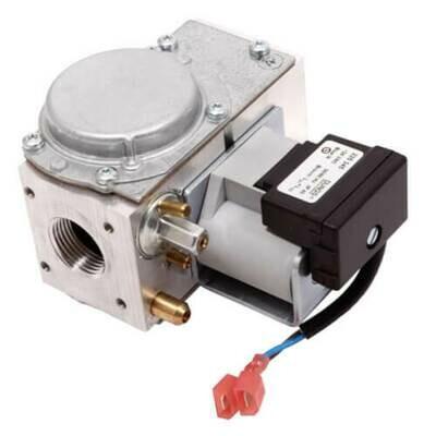 AO Smith Gas Control Valve 100111891