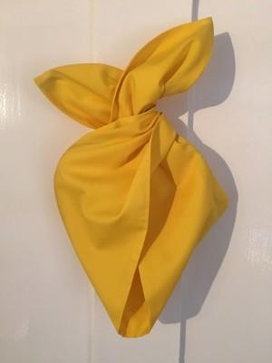 Plain yellow hairband