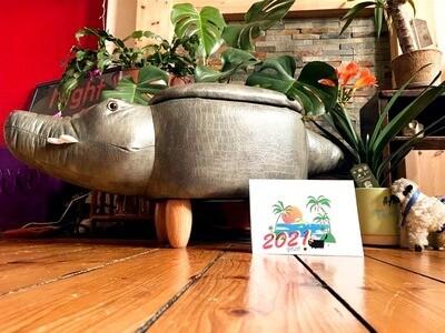 2021 YOLO Calendar with shit cat sticker