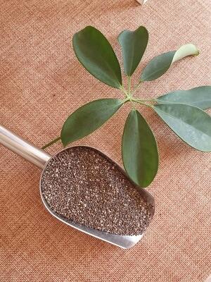 Organic Chia Seeds 100g