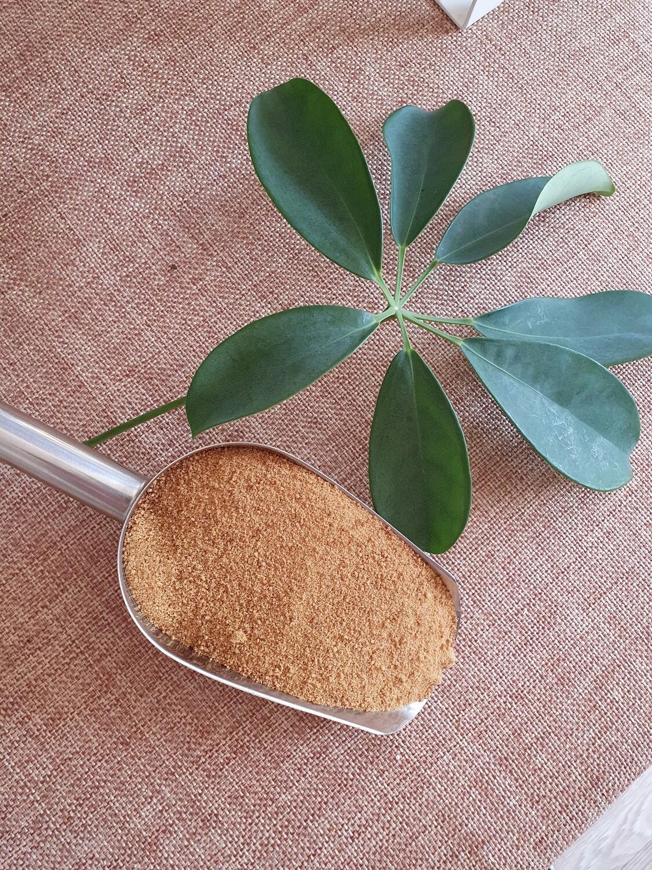 Organic Coconut Sugar 100g