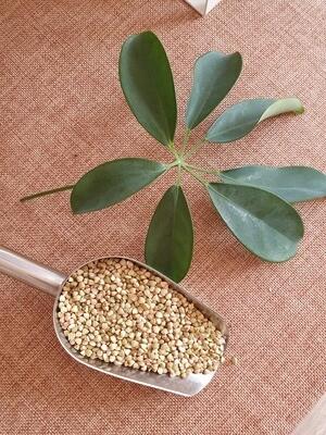 Organic Raw Buckwheat per 100g