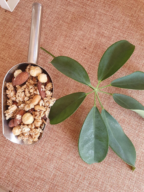 Nutorious Nutrition Classic Granola per 100g
