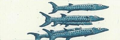 Barracuda Etching