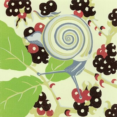 Snail - Greetings Card