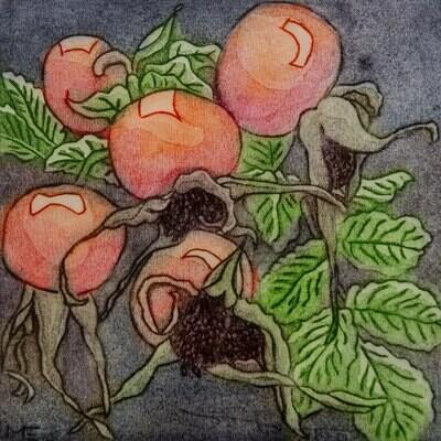 Rosehip - Greetings Card