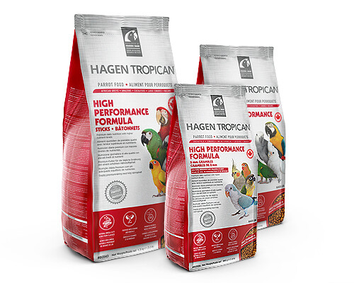 Hari Tropican High Performance Parrot Biscuits 9.07kg