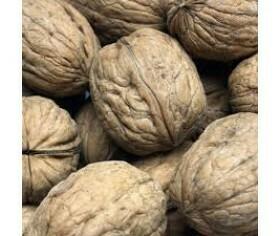 Nuts Walnuts in Shell 5kg