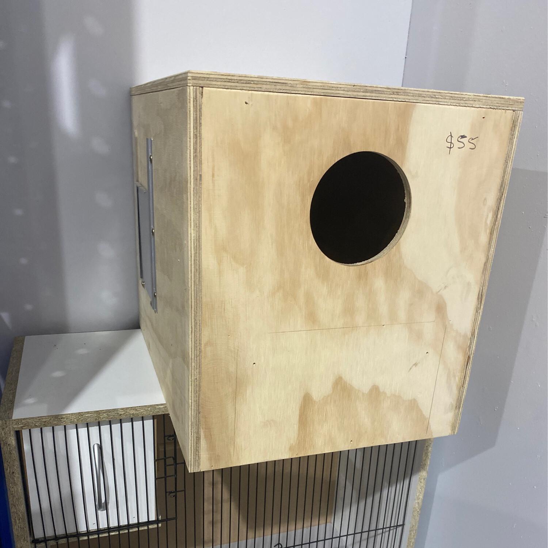 Nest Box Eclectus