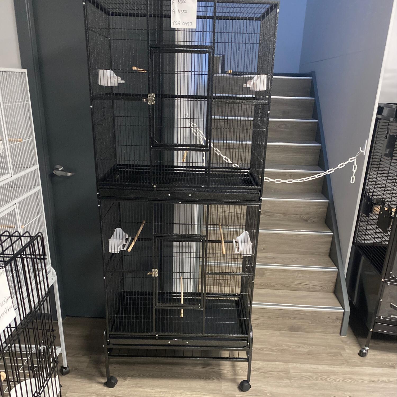 Bird Cage 0497