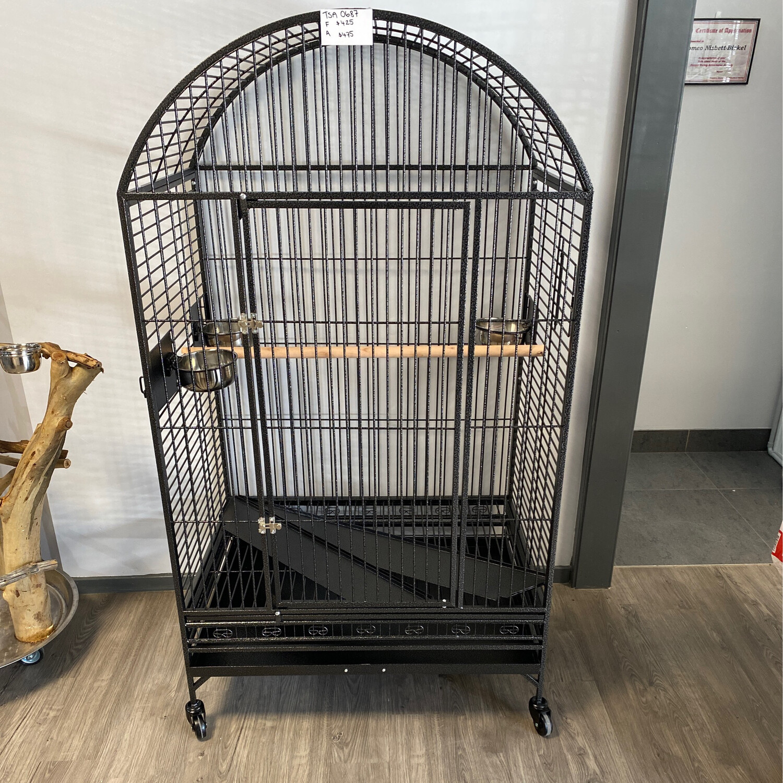Bird Cage 0687