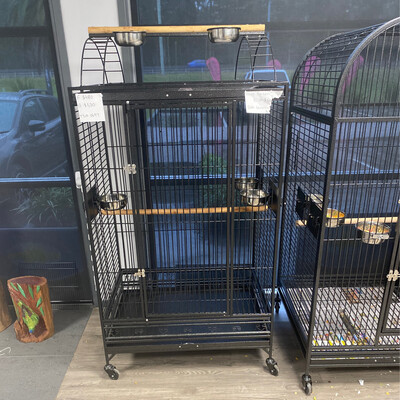 Bird Cage 0697