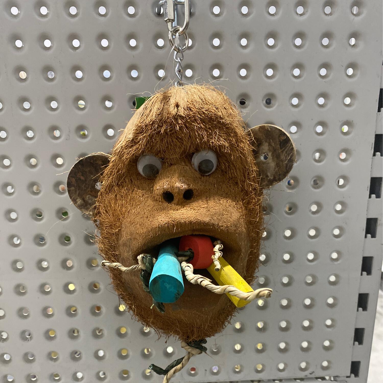 Nino's Java Mr Monkey