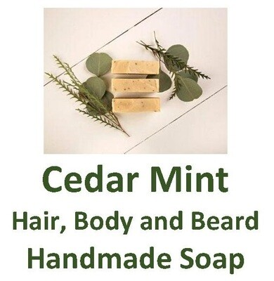 Cedar Mint - Hair, Body and Beard