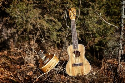 Roos Troll Sopran ukulele