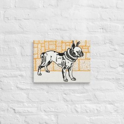 Pitbull Terrier 1912 - Canvas Print