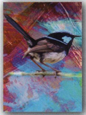 Tea Towel - Blue Wren - Microfibre & Made in Australia - FREE POSTAGE