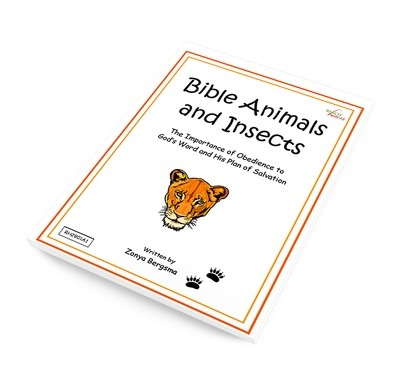 Bible Animals and Insects Ebook