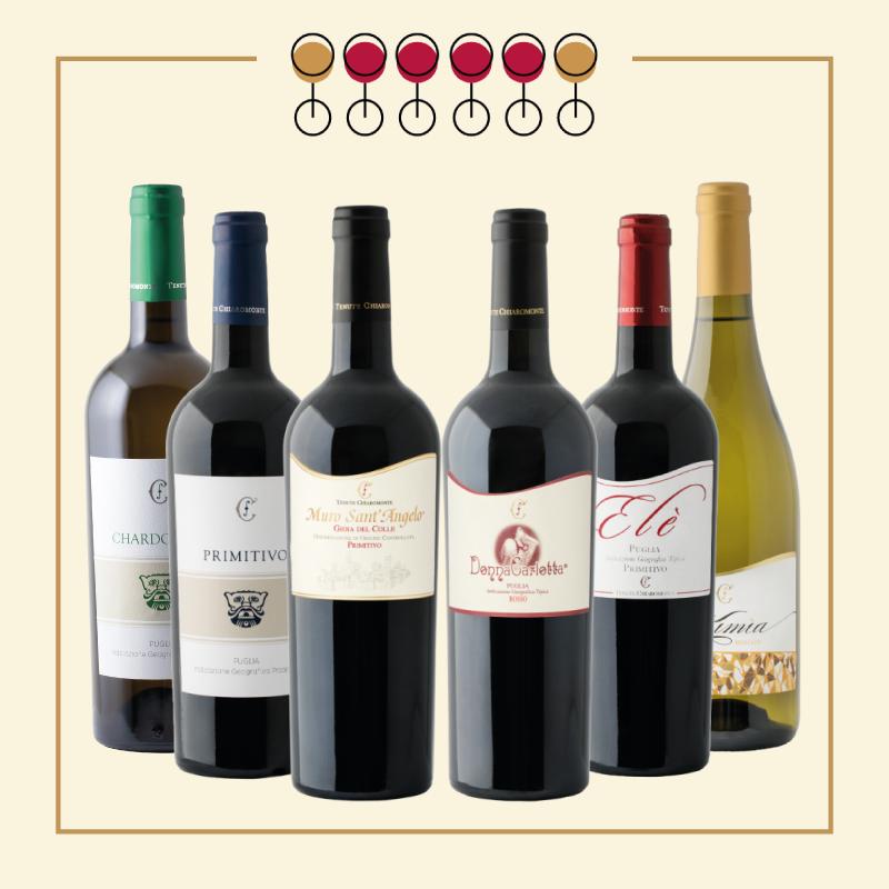 6 Vini: 4 Primitivo, 1 Chardonnay, 1 Moscato Secco.
