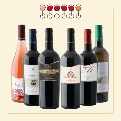 6 Vini: 4 Primitivo, 1 Chardonnay, 1 Pinot Rosato. IN REGALO Olio Extravergine