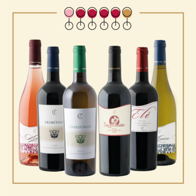6 Vini: 3 Primitivo, 1 Chardonnay, 1 Fiano, 1 Pinot Rosato. IN REGALO Olio Extravergine