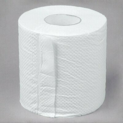 Paper Toilet 2ply roll 12ct