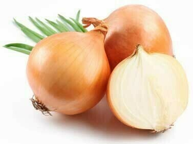 Onion Yellow 40lb Organic