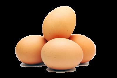 One Time Order Egg Share 2 doz River Creek Farm