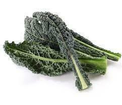 Kale Dino Organic 24ct